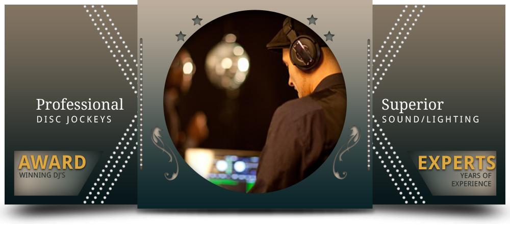 https://www.pleasemrdj.comProfessional DJs